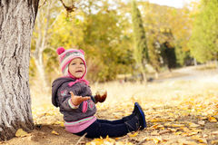 Toddler in fall park Stock Photo