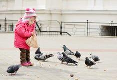 Toddler feeding doves Royalty Free Stock Image