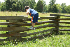 Toddler on Fence Royalty Free Stock Photo