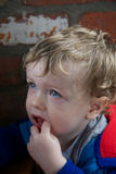 Toddler with finger in his mouth. Portrait of small blond boy with blue eyes wearing red and blue jacket with a finger in his mouth and expression of puzzlement Stock Images