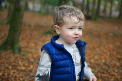 Toddler in forest. Portrait of small blond boy wearing blue body warmer walking in forest with a puzzled expression, orange Autumn leaf background royalty free stock image