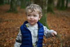 Toddler in forest. Young blond boy in blue jacket (body warmer) waving a stick, background of orange Autumn leaves and forest royalty free stock image