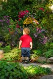 Toddler garden Royalty Free Stock Images