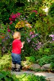 Toddler garden Royalty Free Stock Image