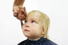 Toddler getting haircut Stock Image