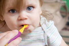 Toddler getting her new teeth cleaned Stock Photography