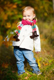 Toddler girl in autumn forest Royalty Free Stock Photos