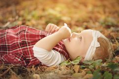 Toddler girl on the autumn park royalty free stock photos