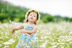 Toddler girl in daisies royalty free stock images