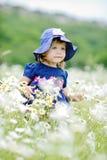Toddler girl in daisy field Stock Photo