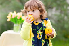 Toddler girl eating lemons Royalty Free Stock Photography