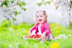Toddler girl eating strawberry in blooming garden Stock Photo