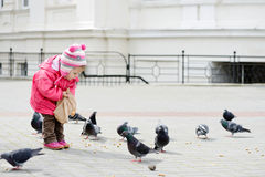 Toddler girl feeding doves Stock Photos