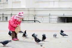 Toddler girl feeding doves Stock Photos