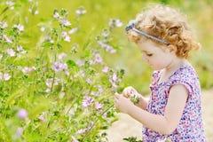 Toddler girl in field Stock Photo