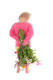 Toddler girl with flowers Royalty Free Stock Photos