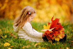 Toddler girl have fun with fallen golden leaves Royalty Free Stock Photo