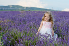 Toddler girl   in lavender field Royalty Free Stock Photos