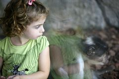Toddler girl looking at the monkey. Toddler girl at zoo looking at the monkey and feeling the connection royalty free stock photo