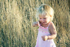 Toddler girl on natural background Royalty Free Stock Photography