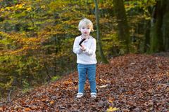 Toddler girl playing in the forest Stock Photos