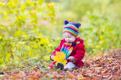 Toddler girl in a red coat playing with red leaves Royalty Free Stock Photo