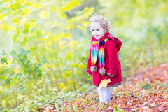 Toddler girl in a red coat with yellow maple leaves. Adorable toddler girl in a red coat playing with yellow maple leaves Stock Photography