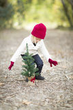 Toddler Girl In Red Mittens and Cap Planting Christmas Tree Sappling Stock Photo