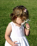Toddler girl smelling flower. Toddler girl smelling a daisy royalty free stock photography
