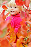 Toddler girl standing in bushes Stock Photos
