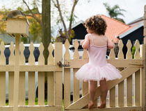 Toddler girl standing on fence Stock Photo