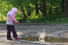 Toddler girl throwing pebbles into big forest Stock Image