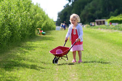 Toddler girl working at vegetables farm Royalty Free Stock Photos