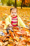 Toddler in golden leaves Royalty Free Stock Images