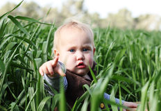 Toddler in the green grass Stock Image