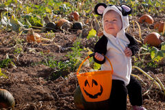 Toddler in Halloween Costume Stock Photo