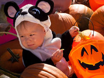 Toddler in Halloween Costume Stock Image