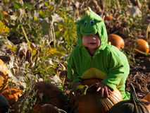 Toddler in Halloween Costume Stock Photo