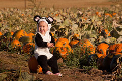 Toddler in Halloween Costume Stock Photography