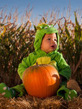 Toddler in Halloween Costume Royalty Free Stock Photography