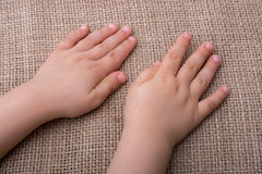 Toddler hand with canvas background. Toddler hand with canvas linen background Stock Image