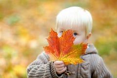 Toddler having fun in autumn, focus on leaf Royalty Free Stock Photos