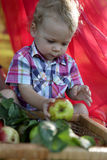 Toddler holding apple Royalty Free Stock Image