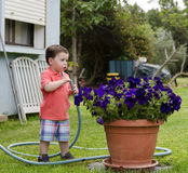Toddler holding a hose. Cute Toddler boy watering a flower with a hose Royalty Free Stock Photo