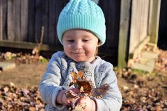 Toddler holding pile of leaves Royalty Free Stock Images