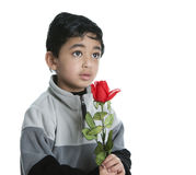 Toddler Holds a Red Rose with a Hopeful Expression Stock Images