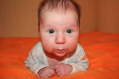 Toddler image of sweet baby boy,  portrait of child. Cute toddler with green eyes Royalty Free Stock Photography