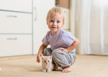 Toddler kid boy playing with a kitten in children Stock Photos