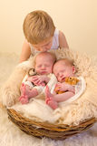 Toddler kissing newborn twin sisters Royalty Free Stock Image