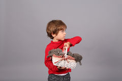 Toddler with kittens Stock Photo